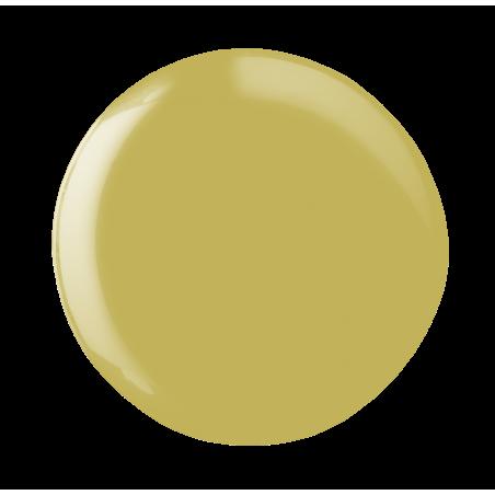 Vernis Semi-Permanent Inspo IN2 Andreia
